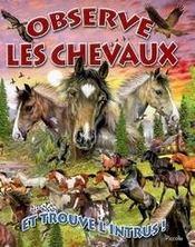 Observe les chevaux et trouve l'intrus - Intérieur - Format classique