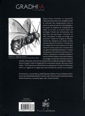 Gradhiva T.6; Voir Et Reconnaitre, L'Objet Du Malentendu - 4ème de couverture - Format classique
