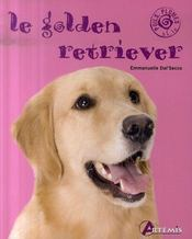 Golden retriever  - Collectif