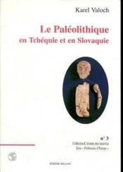 Paleolithique En Tchequie Et En Slovaquie (Le) - Couverture - Format classique
