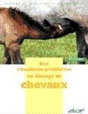 Des situations-problèmes en élevage de chevaux - Couverture - Format classique