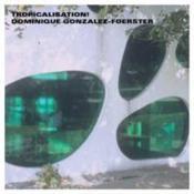 Dominique gonzalez-foerster - tropicalisation! - Couverture - Format classique