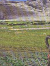 Mongolie ; Le Premier Empire Des Steppes - 4ème de couverture - Format classique