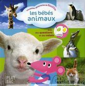 Les bébés animaux ; moustilou découvertes - Intérieur - Format classique