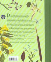 Herbier Des Bords De L'Eau - 4ème de couverture - Format classique
