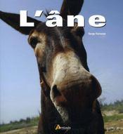 L'âne - Intérieur - Format classique