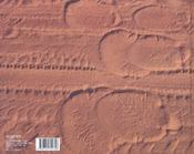 La caravane des éléphants - 4ème de couverture - Format classique