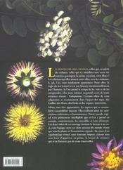 Splendeur et harmonie des plantes libres - 4ème de couverture - Format classique