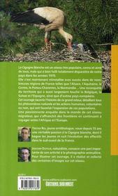 La cigogne blanche ; histoire naturelle d'un grand retour - 4ème de couverture - Format classique