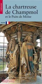 La Chartreuse De Champmol Et Le Puits De Moise - Intérieur - Format classique