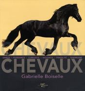 Chevaux - Intérieur - Format classique