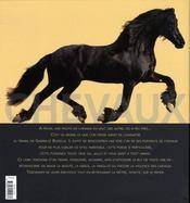 Chevaux - 4ème de couverture - Format classique
