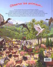 Observe les animaux et trouve l'intrus - 4ème de couverture - Format classique