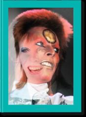 Vente  The rise of David Bowie ; 1972–1973  - Mick Rock