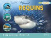 Vente livre :  Requins  - Meadows Daisy - Natacha Godeau - Mattel - Michael Bright