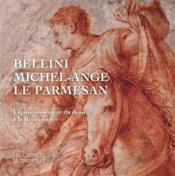 L'épanouissement de la Renaissance ; Bellini, Michel-Ange, Le Parmesan - Couverture - Format classique