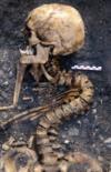 Histoire(S) De Squelettes