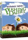 DVD &amp; Blu-ray - Pushing Daisies - Saison 1
