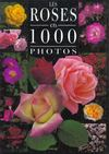Les Roses En 1000 Photos