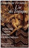 Livres - L'or des Tropiques ; promenades dans le Portugal et le Brésil baroques