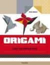Origami ; l'art du papier plié