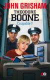 Theodore Boone t.3 ; coupable ?