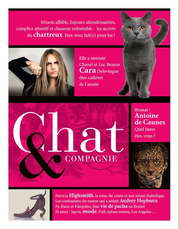 Chat & Compagnie N.1  - Collectif