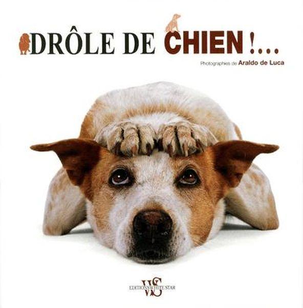 livre - dr u00f4le de chien      - araldo de luca - acheter occasion