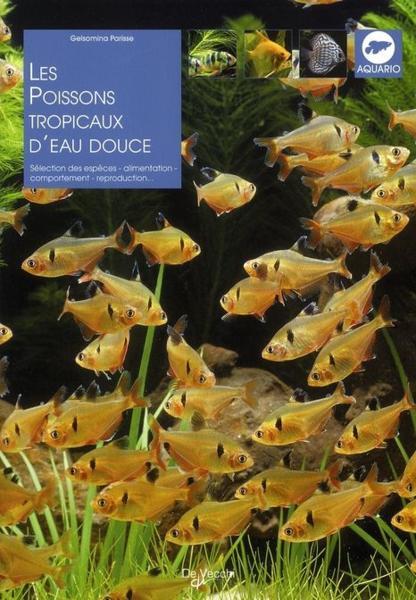 Les poissons tropicaux d 39 eau douce parisse gelsomina for Poisson tropicaux eau douce