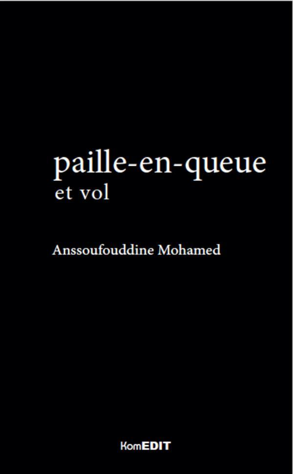 Paille-en-queue (2e édition)  - Mohamed Anssoufouddine