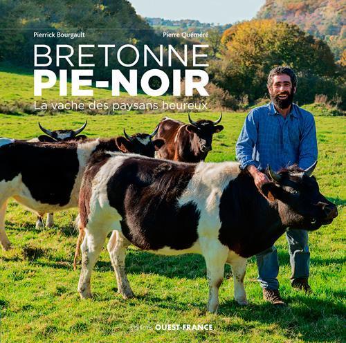 bretonne pie noir la vache des paysans heureux de. Black Bedroom Furniture Sets. Home Design Ideas
