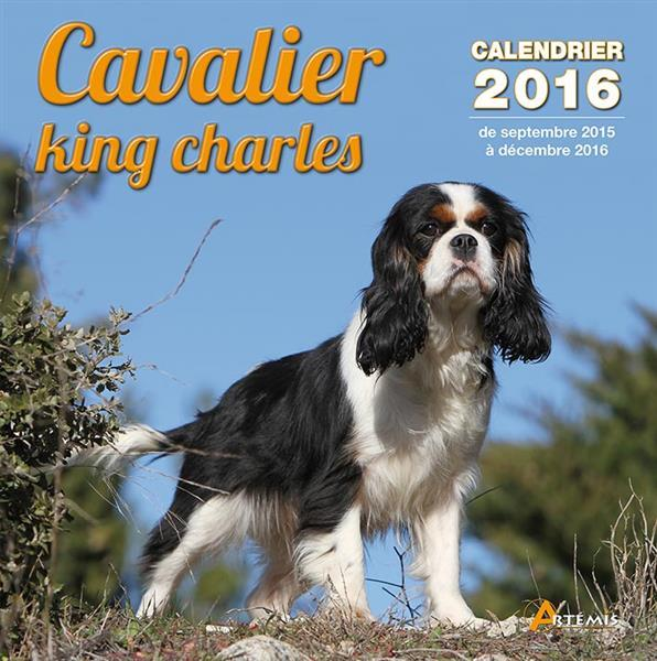 Cavalier king charles (2016)  - Collectif