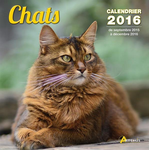 Chats (2016)  - Collectif