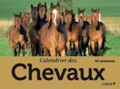 Calendrier des chevaux - Couverture - Format classique