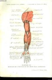 L'ANATOMIE EN POCHE. 4e EDITION REVUE ET AUGMENTEE. 424 PLANCGES - Couverture - Format classique