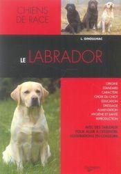 Le labrador - Intérieur - Format classique