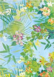 Florals: Notecards (Archives Of Susan Collier And Sarah Campbell) /Anglais - Couverture - Format classique