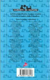 Les petites betes du bord de mer - 4ème de couverture - Format classique
