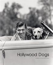 Vente livre :  Hollywood Dogs /Anglais  - Abbott Gareth