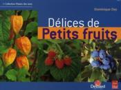 Délices de petits fruits - Couverture - Format classique