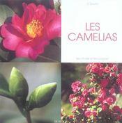 Les Camelias - Intérieur - Format classique