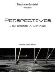 Perspectives... du bronze à l'image - Couverture - Format classique