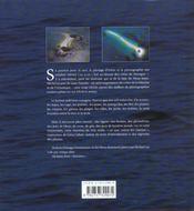 Vol Au-Dessus Des Cotes De Bretagne - 4ème de couverture - Format classique
