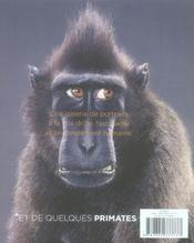 Portraits De Singes - 4ème de couverture - Format classique
