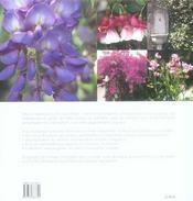 Les Plantes Grimpantes - 4ème de couverture - Format classique