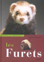 Furets - Intérieur - Format classique