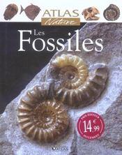 Les Fossiles - Intérieur - Format classique
