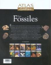 Les Fossiles - 4ème de couverture - Format classique
