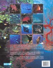 Poissons de Nouvelle-Calédonie - 4ème de couverture - Format classique