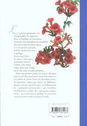 Plantes Grimpantes - 4ème de couverture - Format classique